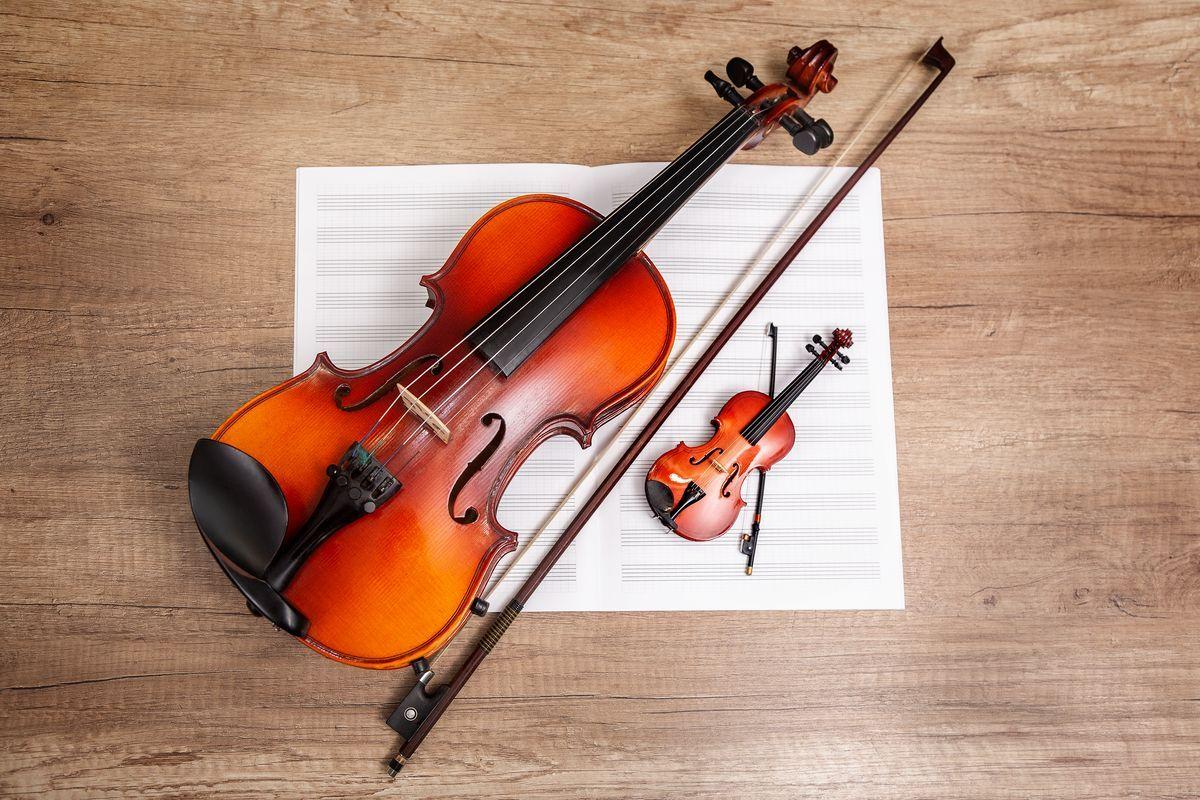 Viola e violino